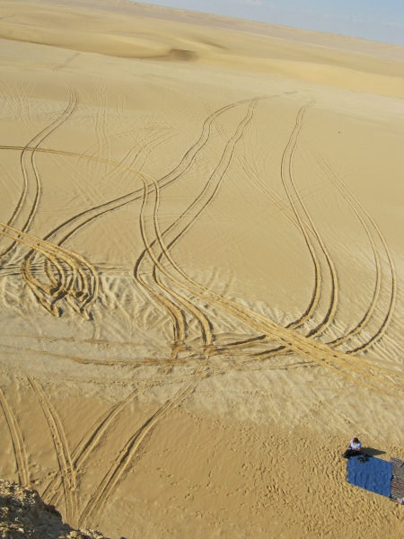 Tracks in the desert