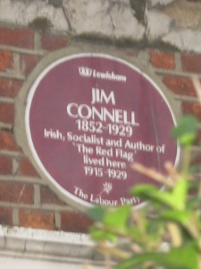 Shaky picture of plaque